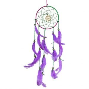 Purple & Green Dream Catcher