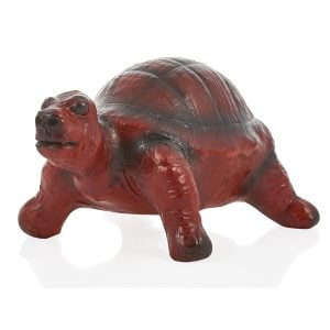 Leather Turtle